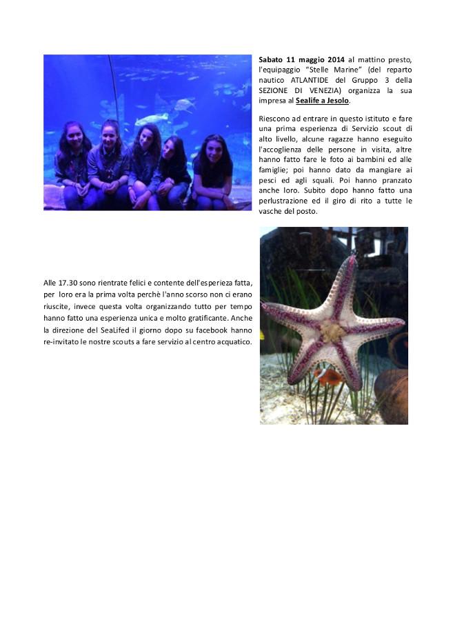 Impresa del reparto nautico al Sealife di Jesolo